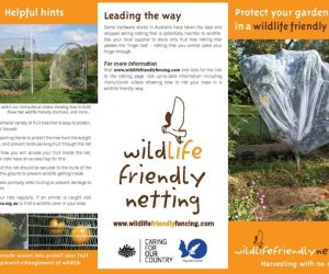 Flying fox friendly Nets for fruit trees_Page_1_result