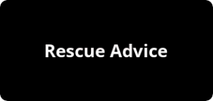 Click Here For Rescue Advice
